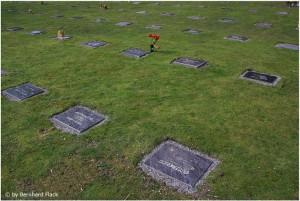 Ein Urnenrasenreihengrab Feld in Oberhausen (evangelischer Kirchen Friedhof an der Harkortstraße in Oberhausen Osterfeld) urnenrasenreihengrab Urnenrasenreihengrab Urnenrasenreihengrab 300x201